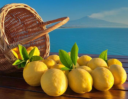 Citrons-Sicile-Etna